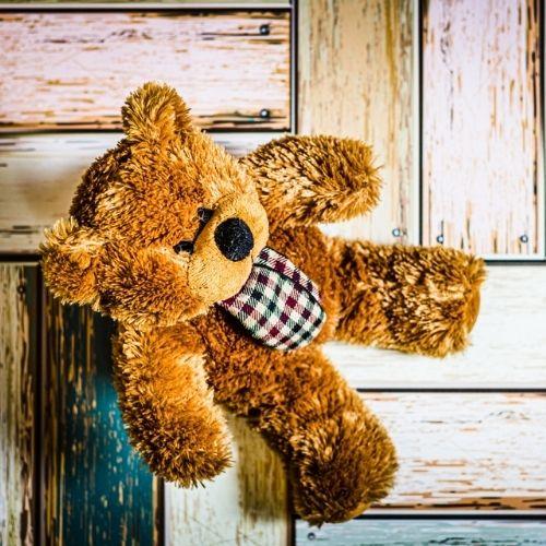Teddybär Anja Josten Familienberatung